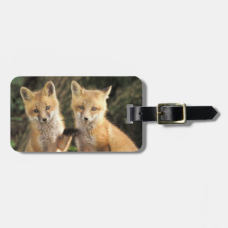Red Fox pup in front of den Vulpes vulpes) Luggage Tag