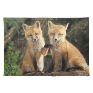 Red Fox pup in front of den Vulpes vulpes) Placemat