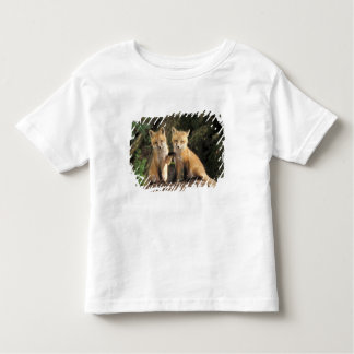 Red Fox pup in front of den Vulpes vulpes) Toddler T-Shirt