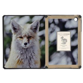 Red Fox sitting on snow bank, Vulpes, Mt. iPad Mini Retina Covers