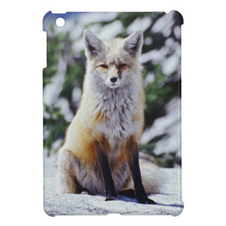 Red Fox sitting on snow bank, Vulpes, Mt. Cover For The iPad Mini
