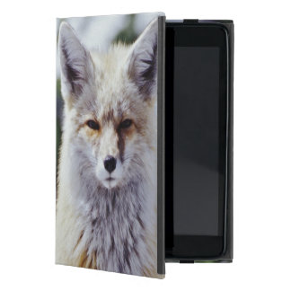 Red Fox sitting on snow bank, Vulpes, Mt. iPad Mini Covers