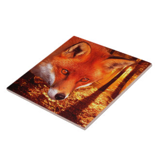 Red Fox Tile