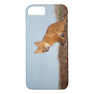 red fox, Vulpes vulpes, in fall colors along the 2 iPhone 8/7 Case