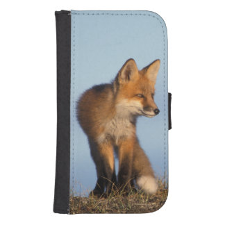 red fox, Vulpes vulpes, in the 1002 area of Samsung S4 Wallet Case