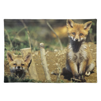 Red Fox, Vulpes vulpes , young at den, Placemat