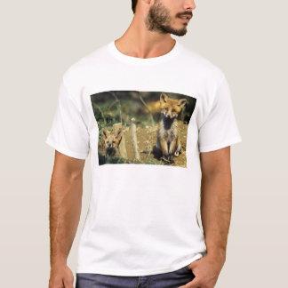 Red Fox, Vulpes vulpes , young at den, T-Shirt