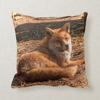 Red Fox Wild Animal Picture Cushion