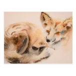 Red Fox Wildlife Watercolor Friday Harbour Card Postcard