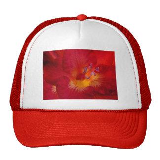 Red Freesia Flower Items Trucker Hat