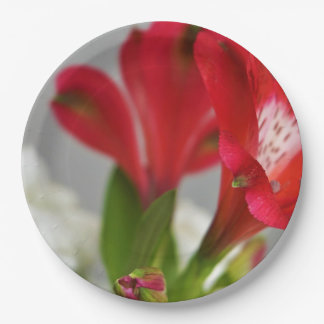 Red freesias,red flowers, paper plate
