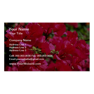 Red Fuchsia blossoms El Yunque Rainforest Puerto Business Card Templates