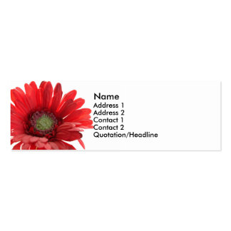 Red Gerber Daisy Contact Card Business Card Template