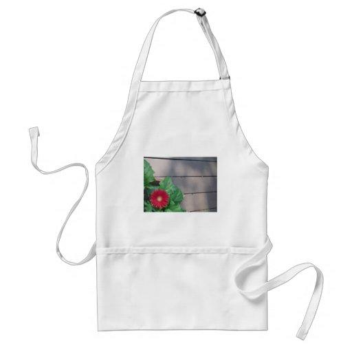 Red Gerber Daisy flower Aprons