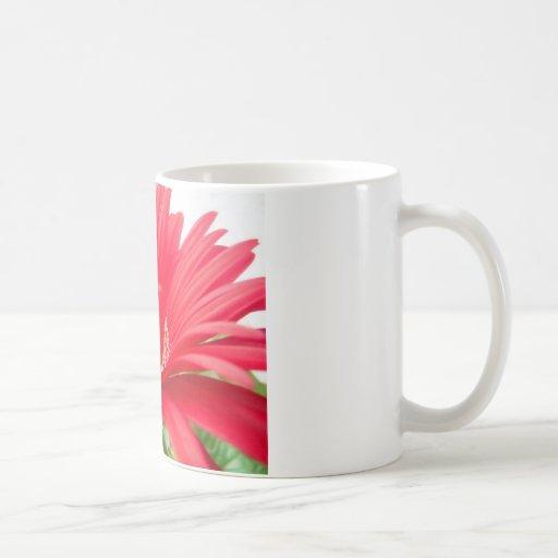red gerber daisy: coffee mug