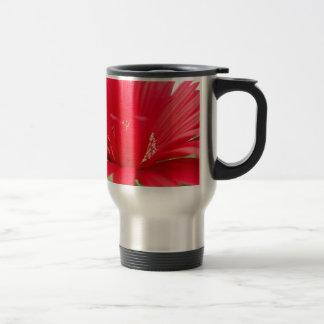 red gerber daisy: coffee mugs