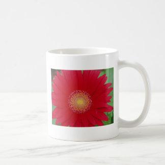 red gerber daisy coffee mug