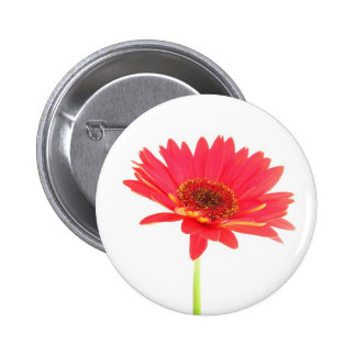 Red Gerbera Daisy Floral Button