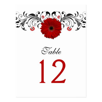 Red Gerbera Daisy Table Number Card Post Card