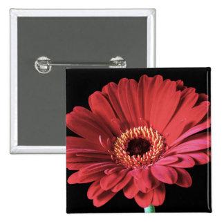 Red Gerbera square button