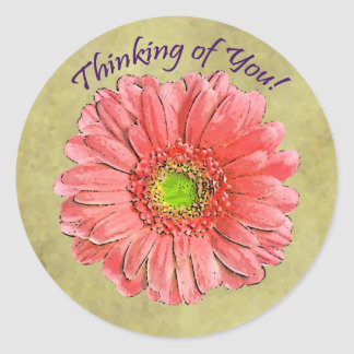 Red Gerbera Thinking of You sticker