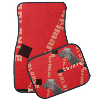 RED GRAPHIC WEIM CAR MATS FULL SET BY BLU WEIM