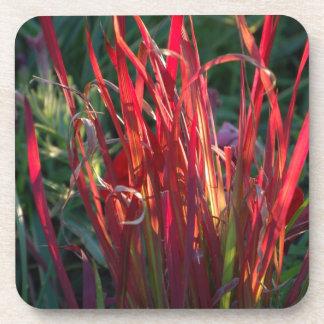 Red Grass DVZN Zaz JPG Beverage Coaster