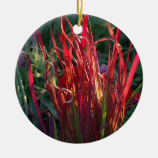 Red Grass DVZN Zaz.JPG Christmas Ornaments