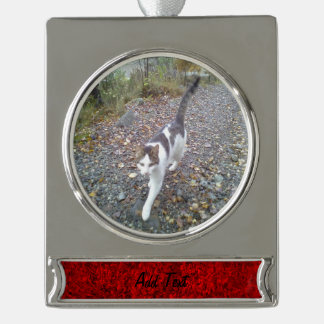 Red Grass Silver Plated Banner Ornament