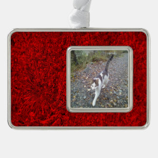Red Grass Silver Plated Framed Ornament
