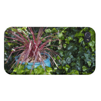 Red Grassy Plant in Ivy iPhone 4 Cover