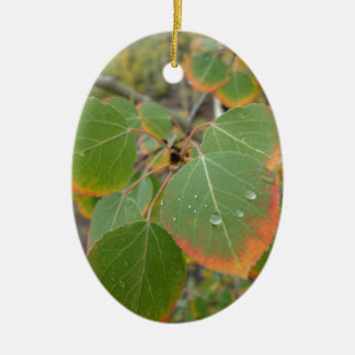 red green aspen leaf ceramic oval decoration