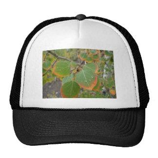 red green aspen leaf mesh hats