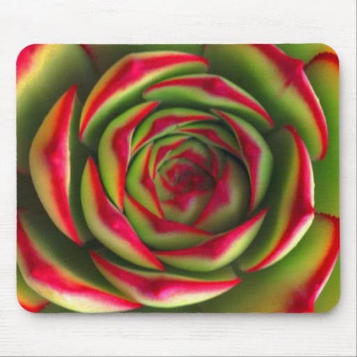 Red green spiral flower mouse pad