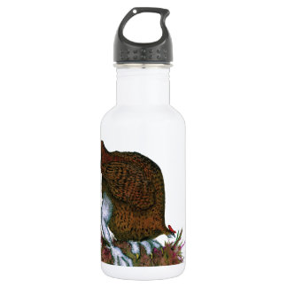 Red Grouse bird, tony fernandes 532 Ml Water Bottle