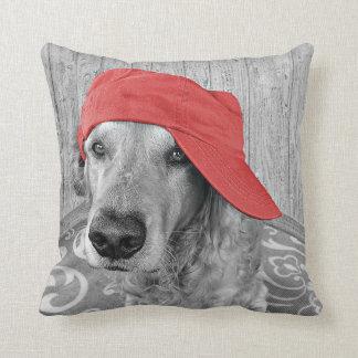 red hat on golden retriever cushion