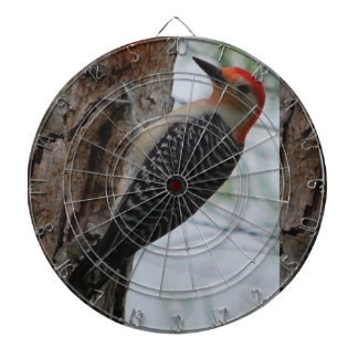 Red Headed Woodpecker, Metal Cage Dartboard