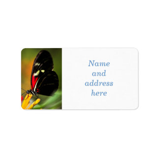 Red heliconius dora butterfly address label