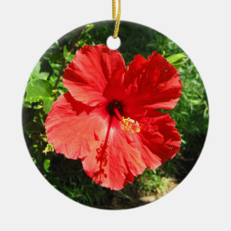 Red Hibiscus Flower Photograph from Hawaii Christmas Ornament
