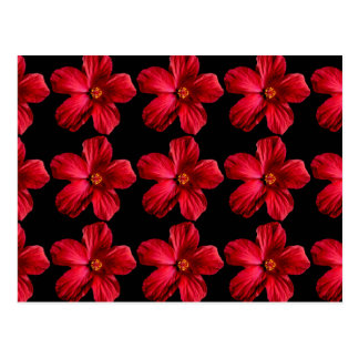 Red Hibiscus Flower Postcards