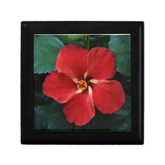 Red Hibiscus Small Square Gift Box