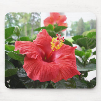 Red hibiscus mousepad