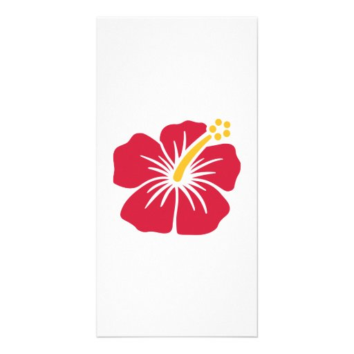 Red hibiscus personalized photo card