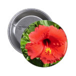 Red Hibiscus Pin