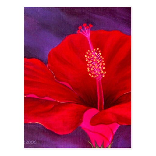 Red Hibiscus Tropical Flower Painting - Multi Postcard