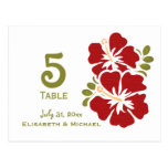 Red Hibiscus Wedding Reception Table Number Cards Postcard