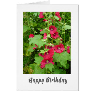 Red Hollyhocks Birthday Card