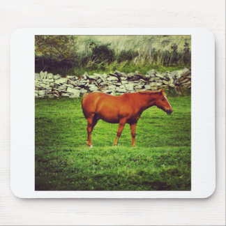 Red horse mouse pad