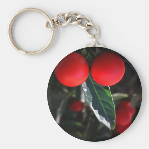 Red Hot Chilli Pepper Key Chains