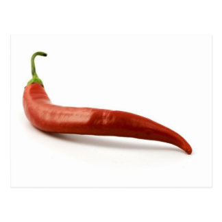 Red Hot Chilli Pepper On White Background Postcard